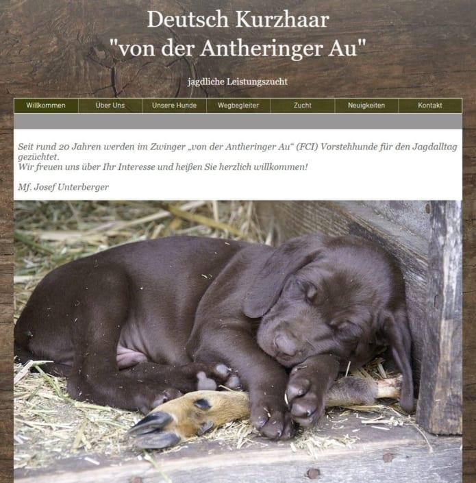 Neue Website des Kurzhaar Zwingers von der Antheringer Au